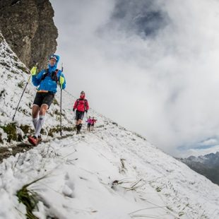 Gore-Tex Transalpine Run 2014